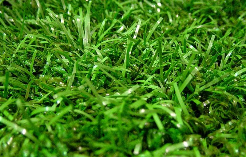 beaux gazons piscine p 2g du beau gazon synth tique et la belle pelouse artificielle de jardin. Black Bedroom Furniture Sets. Home Design Ideas
